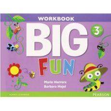 Big Fun 3 Workbook