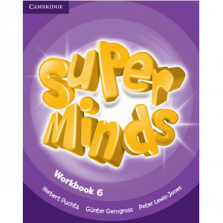 Super Minds 6 Workbook pdf
